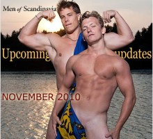 handsome men from scandinavia
