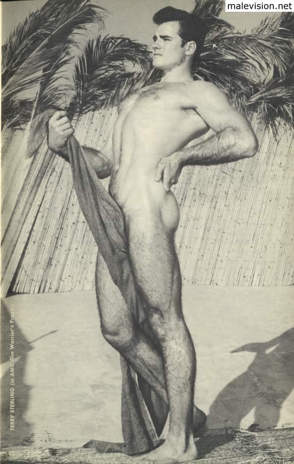 muscle male vintage model