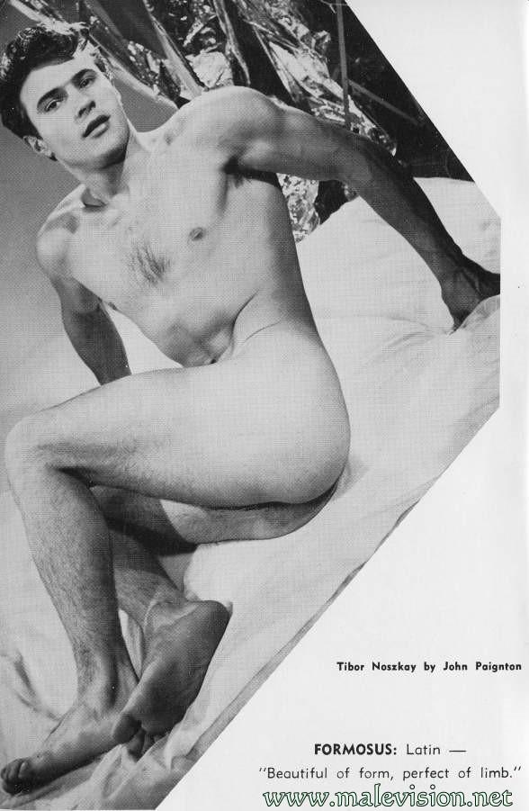 handsome bodybuilder from physique vintage
