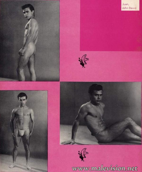 muscle man physique photo art