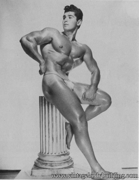 Stunning bodybuilder physique photo
