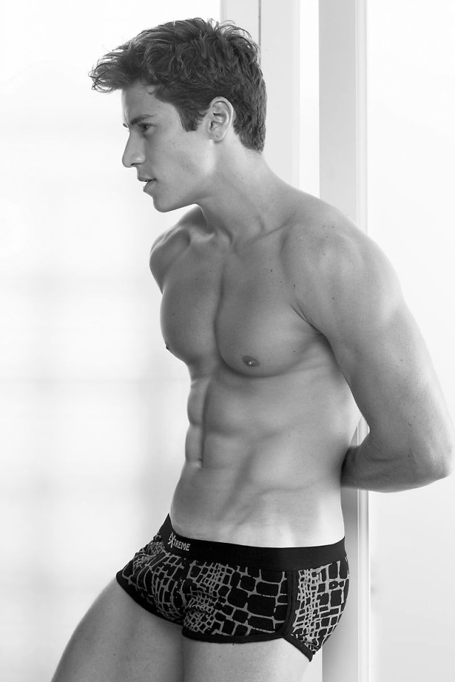 muscle fintess model