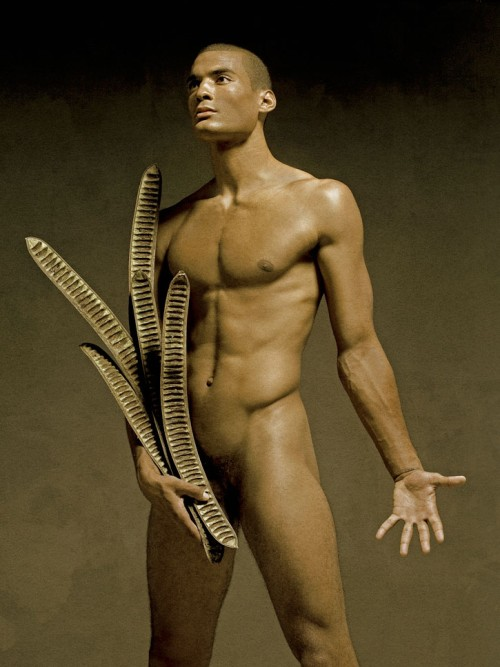 david vance jungle fever