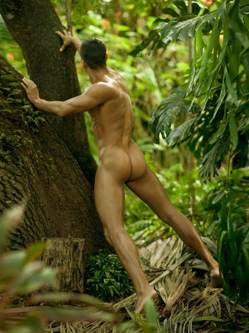 smooth muscle man butt